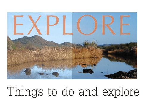 Things to do and explore at The Place